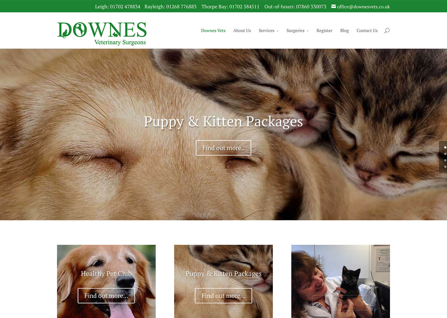 Vets website design for Downes Vets: Home page design