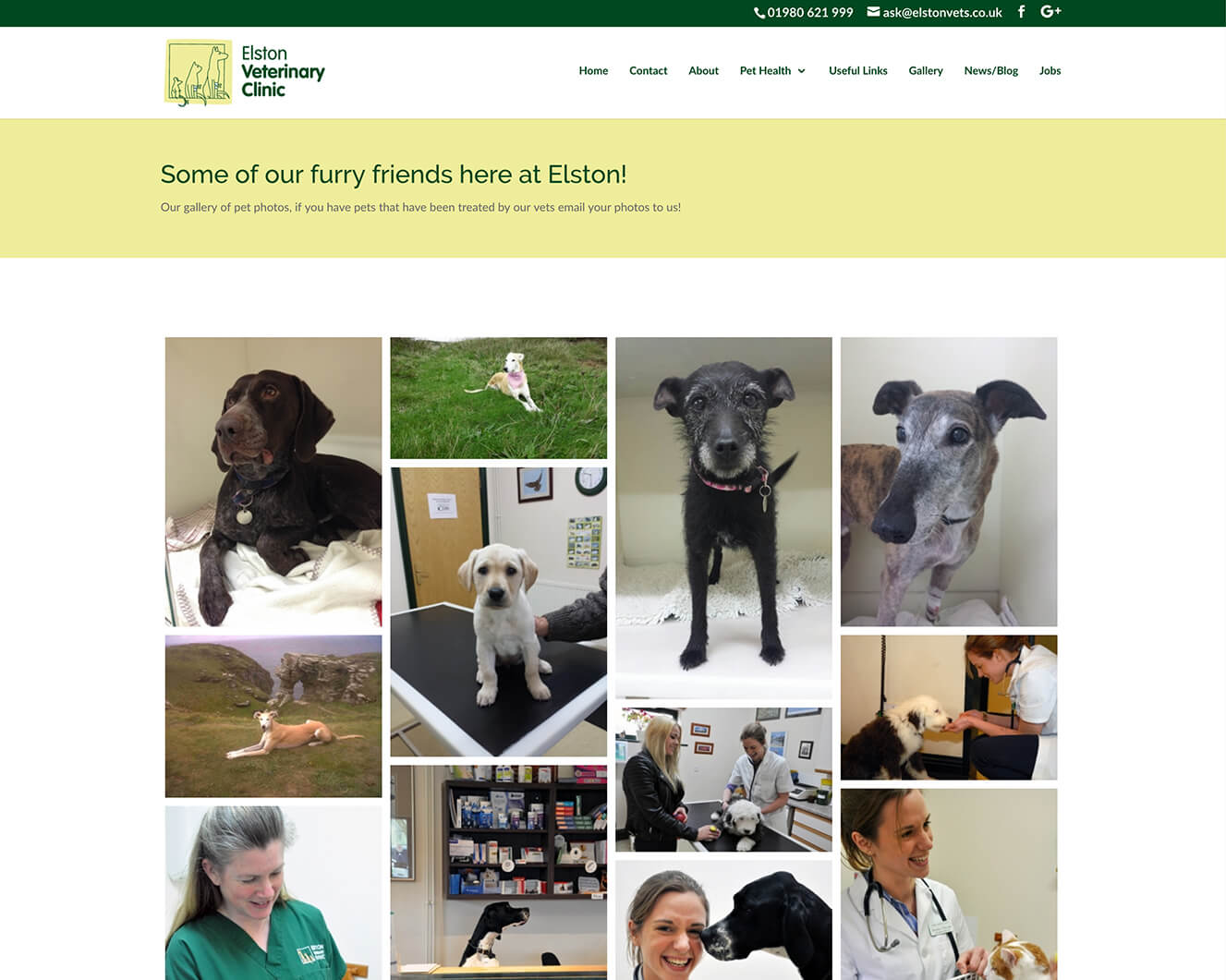 Veterinary website design for Elston Vets: Image gallery page