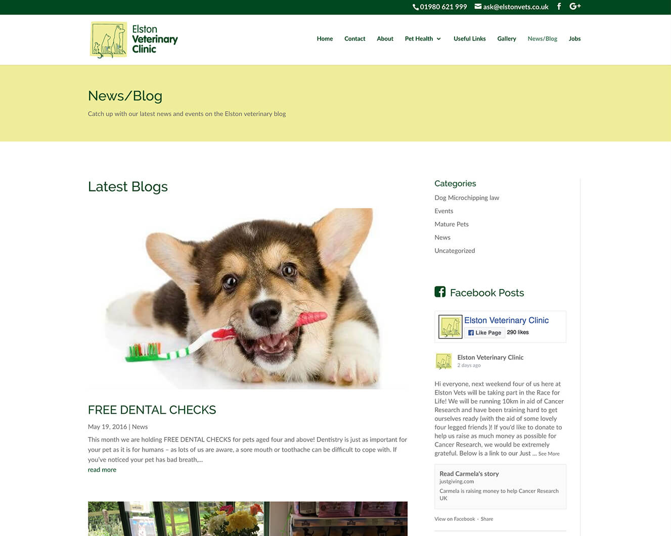 Veterinary website design for Elston Vets: News page