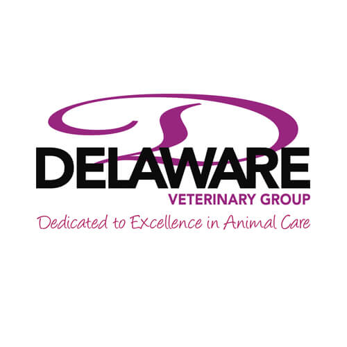 Proactive Marketing services for Delaware Vetinary Group