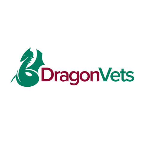 Proactive Marketing services for Dragon Vets