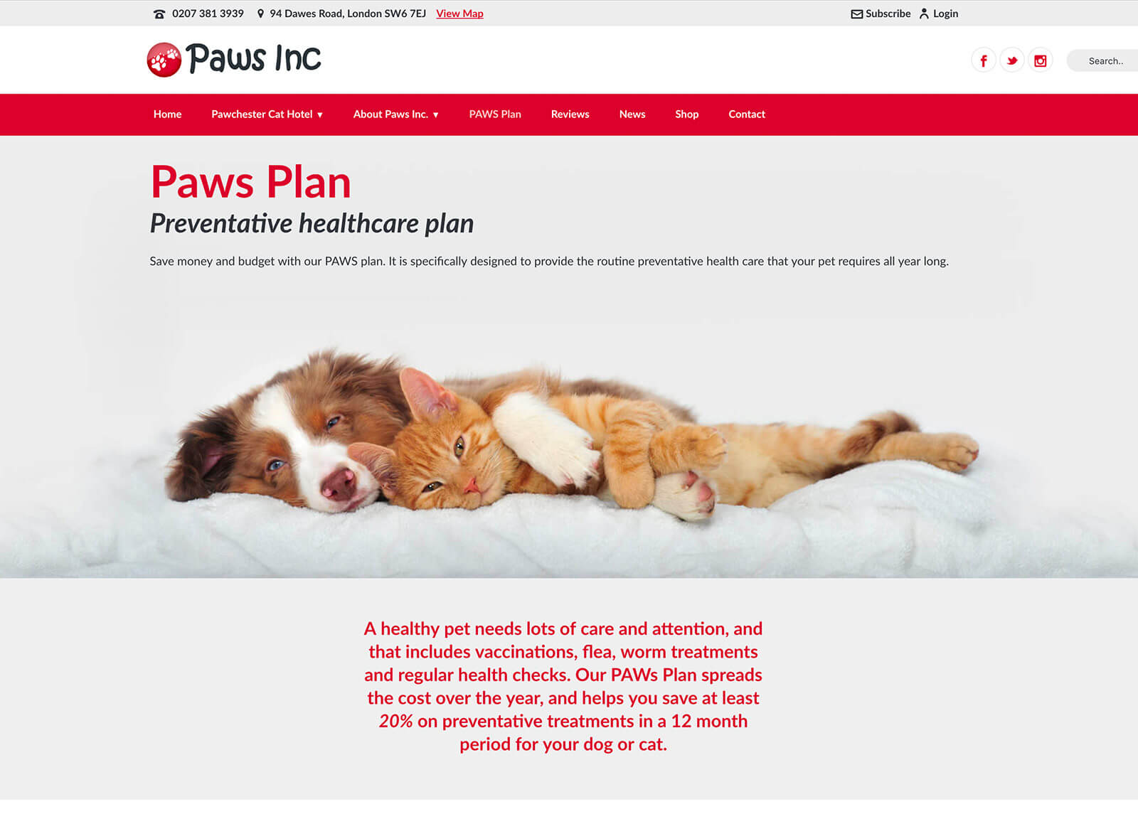 Cat hotel and vet practice website design - Healthy pet club page