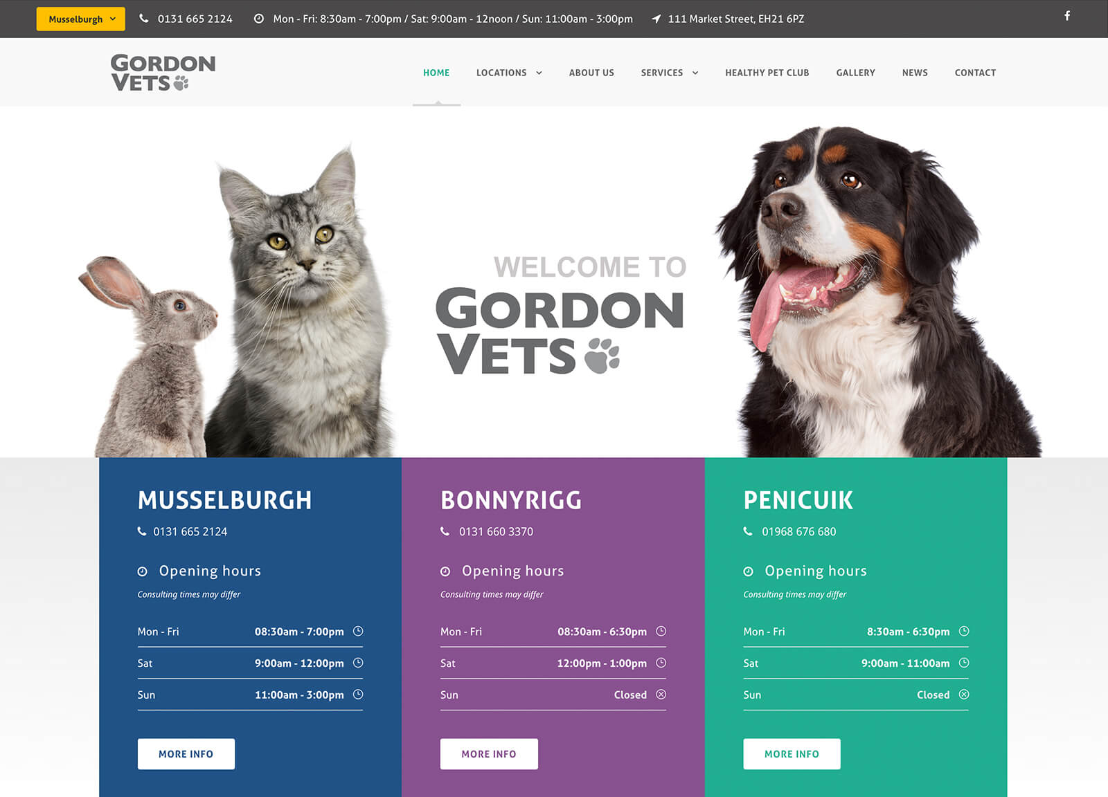 Home page - Gordon Vets website design