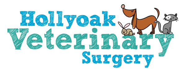 Hollyoak-LogoDev-final-logo-resized-600