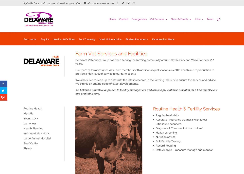 User friendly vet website: Online pet registration form