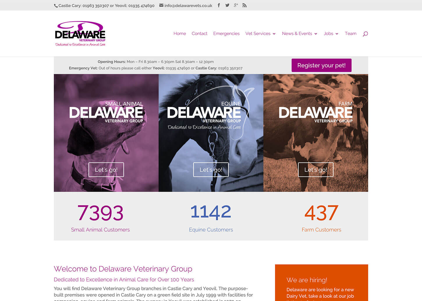 User friendly vet website no longer leaves customers lost and confused