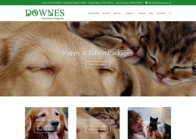 Vets website design: Downes Vets